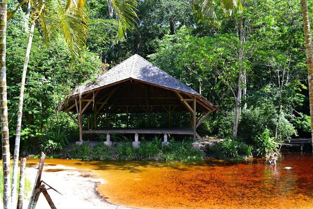 Réhabilitation des criques de Guyane